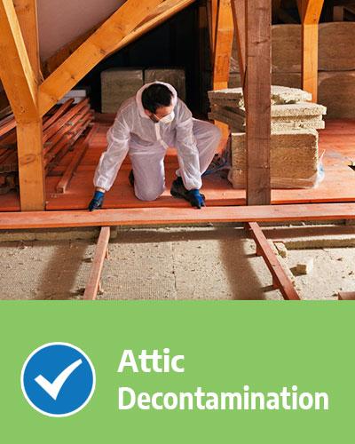 Attic Decontamination Attic Rat Control
